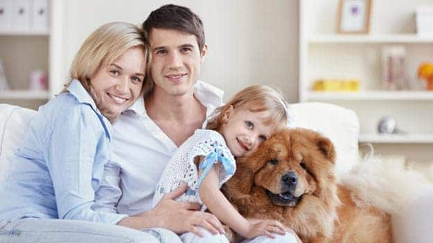 Wills & Trusts dog-young-family Direct Wills Maidstone
